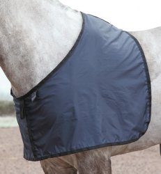 Bogskydd Anti Rub Bib Satin Shires