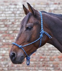 Repgrimma Knotted Halter Waldhausen