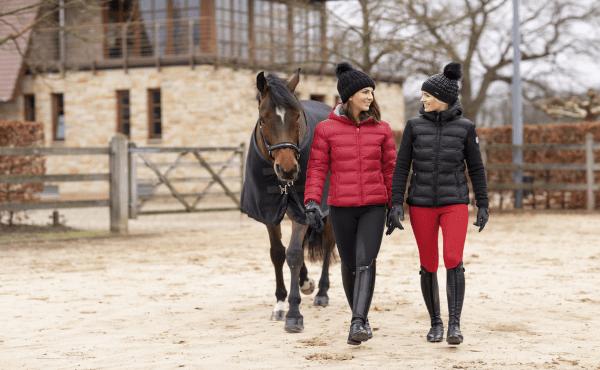 Online Dating häst dejtingsajt Frankrike
